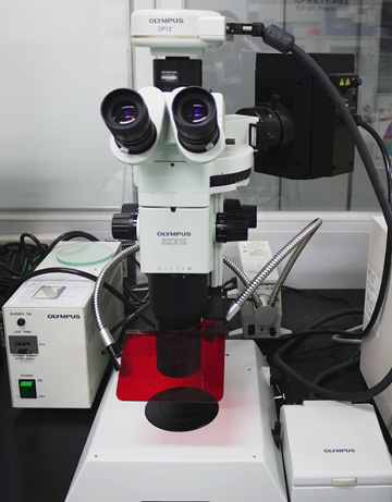 Fluorescent objective microscope